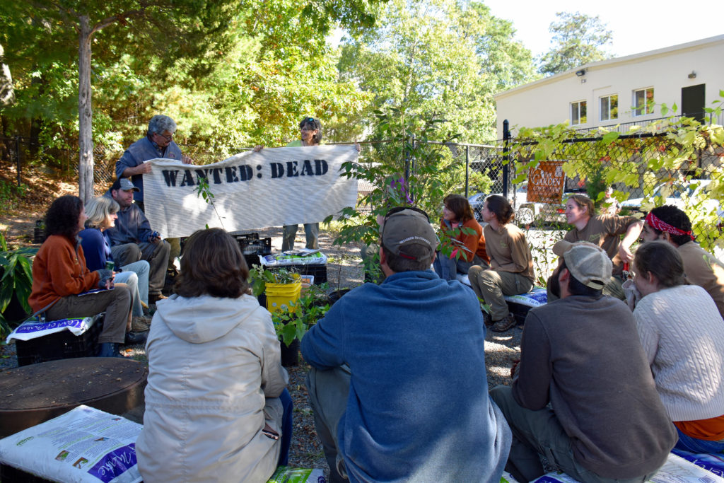 WANTED: DEAD NOT ALIVE invasive plants training at The Garden Continuum