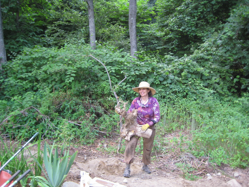 Carol with a tree stump she removed for curb appeal in Sharon, MA.